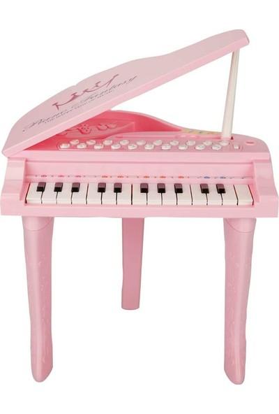 Birlik Sesli ve Işıklı Benim İlk Piyanom