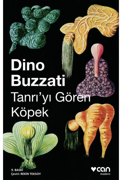 Tanrıyı Gören Köpek - Dino Buzzati
