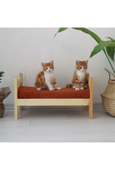 Bubo Decor Masif Ahşap Duvar Kedi Yatağı