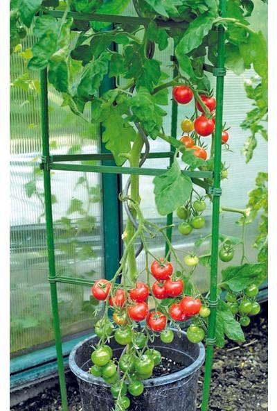 Bahçem Üçgen Pwc Domates Destek Kafesi