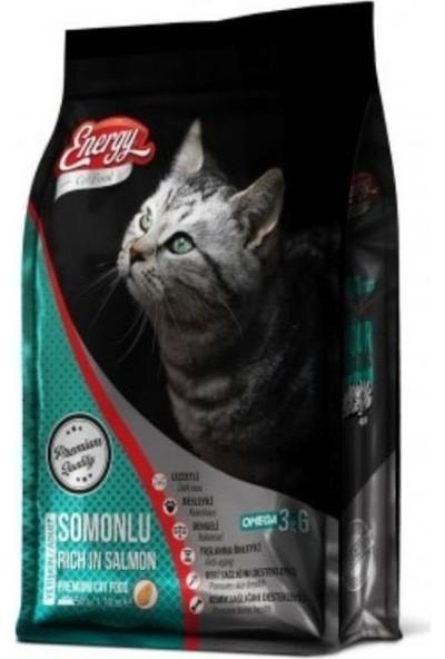 Energy Somonlu Kedi Maması 500GR