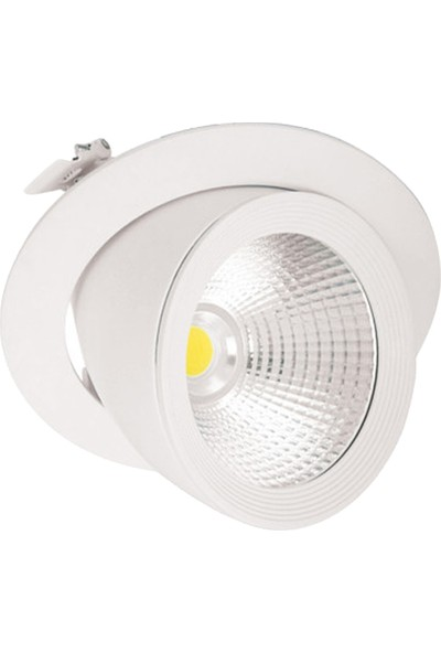 Dünya LED 30W Sıva Altı Salyangoz Armatür