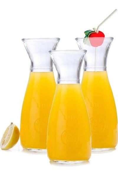 Evim Tatlı Evim 6 Adet Paşabahçe Limonata Bardağı Seti Pipet Hediyeli