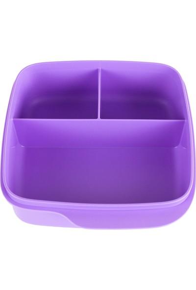 Tupperware Bölmeli Beslenme Kutusu 550 ml