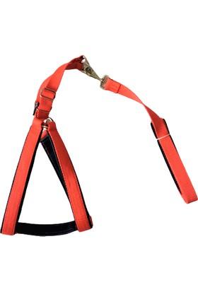 Pacopet Kırmızı Ayarlanabilir Köpek Göğüs ve Gezdirme Tasması Seti Medium Beden