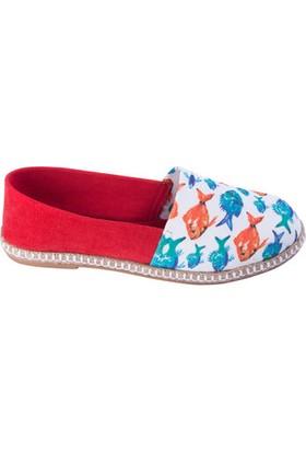 Biggdesign Anemoss Akvaryum Kadın Ayakkabı
