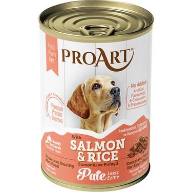 Proart Somonlu ve Pirinçli Ezme Yetişkin Köpek Konserve Fiyatı