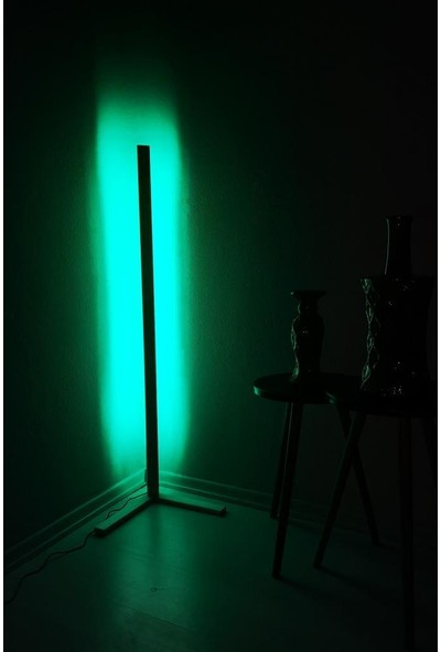 Met Çarşı L Köşe Lambader Rgb LED Aydınlatma