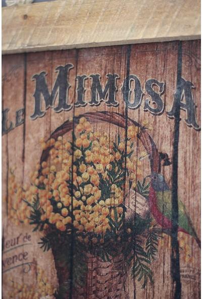 Pratikolay Doğal Ahşap Le Mimosa Retro Dekoratif Tablo