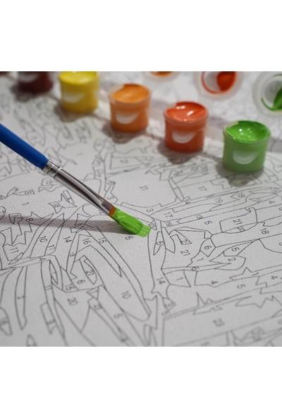 Sayılarla Boyama Tablo Seti Kanvas Fırça Boya Dahil 45 x 55 cm - Kayık