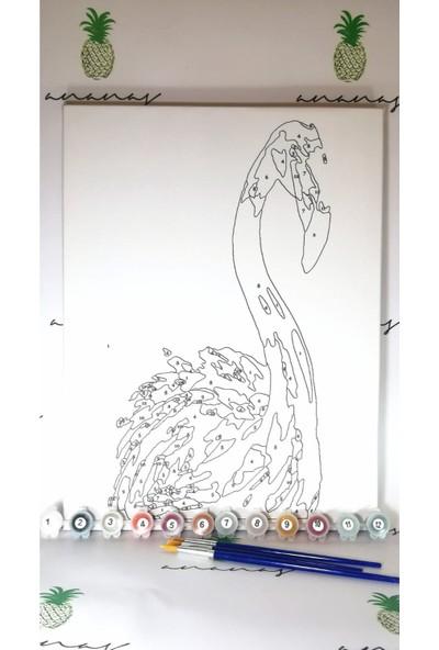 Ananas Bilişim Sayılarla Boyama Hobi Seti + Fırça Tuval Ans-30 Flamingo RB-4