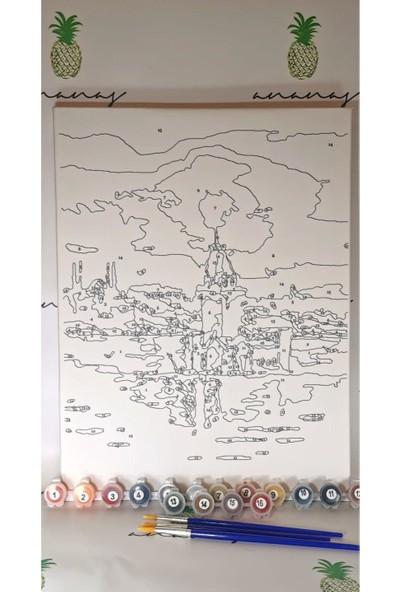 Ananas Bilişim Sayılarla Boyama Hobi Seti + Fırça Tuval Ans-4 Kız Kulesi B RB-3