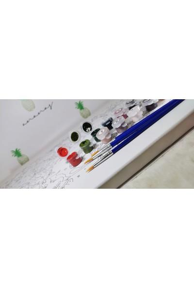 Ananas Bilişim Sayılarla Boyama Hobi Seti + Fırça Tuval Ans-9 Sanatsal Ak RB-3