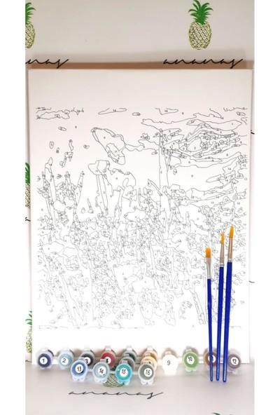 Ananas Bilişim Sayılarla Boyama Hobi Seti + Fırça Tuval Ans-35 Çiçekler Gelincik RB-2
