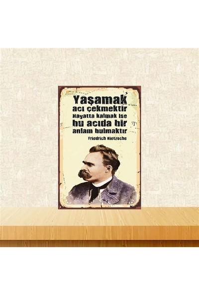Selens Yaşamak Acı Çekmektir Friedrich Nietzsche 20 x 30 cm Retro Ahşap Poster
