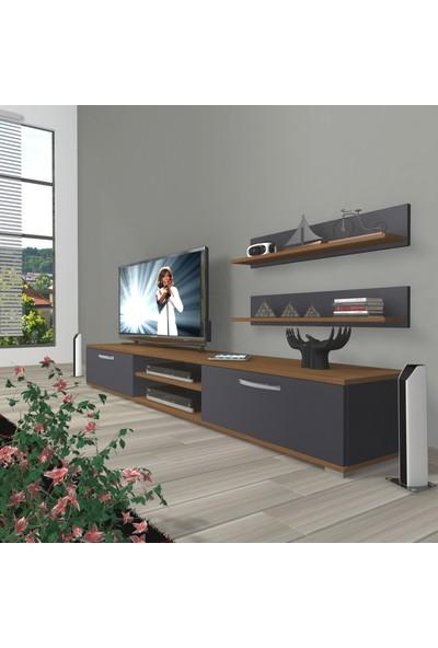 Decoraktiv Eko 4 Mdf DVD Tv Ünitesi Tv Sehpası Ceviz Antrasit