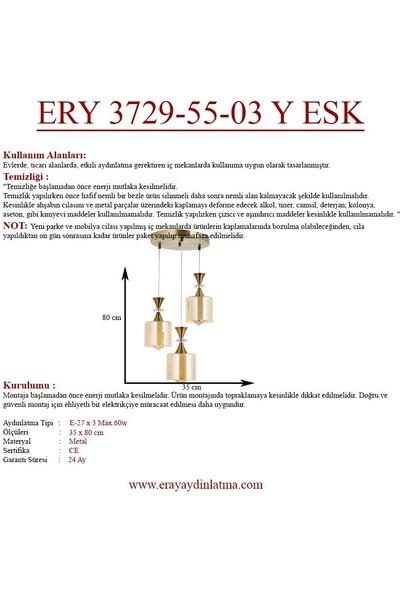 Eray Aydınlatma Ery 3729-55-03 Y Eskitme 3'lü Avize