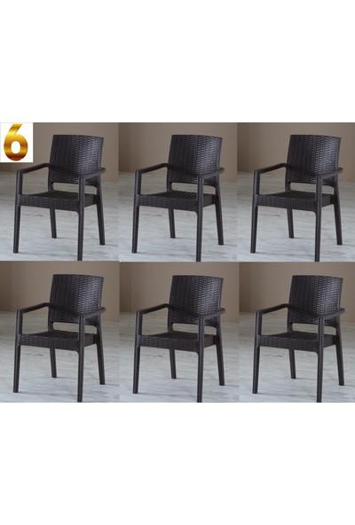 Evart Plastik Rattan Sandalye 6 Adet