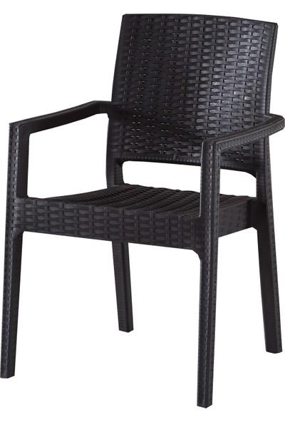 Evart Plastik Rattan Sandalye 4 Adet
