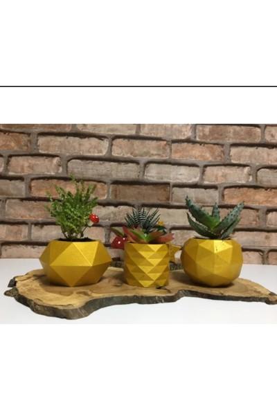 5 Home Deepo Çiçekli 3'lü Saksı Seti