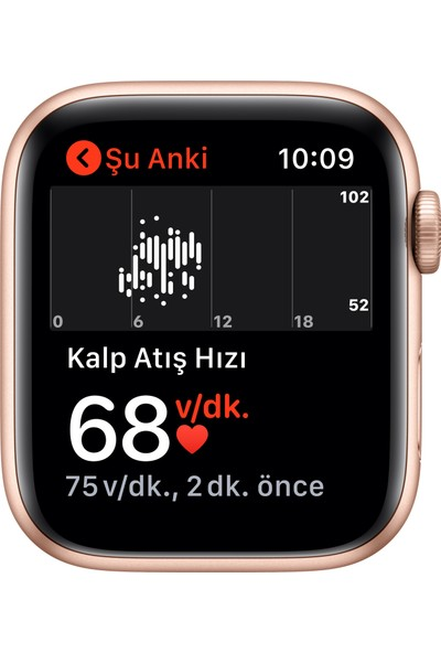 Apple Watch SE 44mm GPS Gold Alüminyum Kasa ve Kum Pembesi Spor Kordon MYDR2TU/A