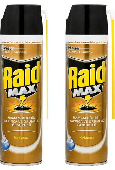 Raid Böcek Savar Max 300 ml x 2