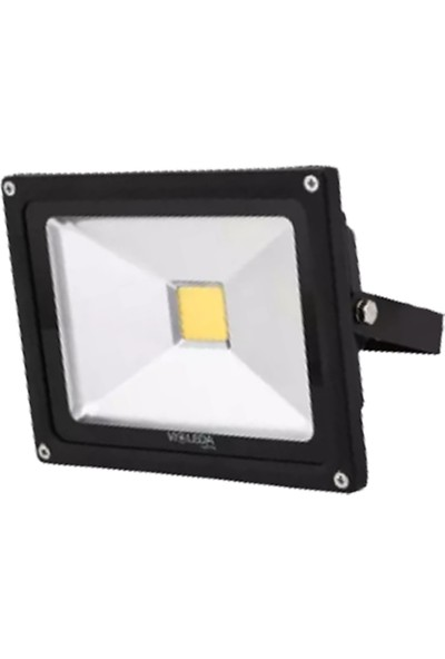 Violet Beyaz Cob LED Projektör 30W 6500K TVL-3030