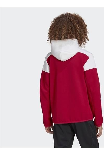 adidas Arsenal Anthem Erkek Sweatshirt