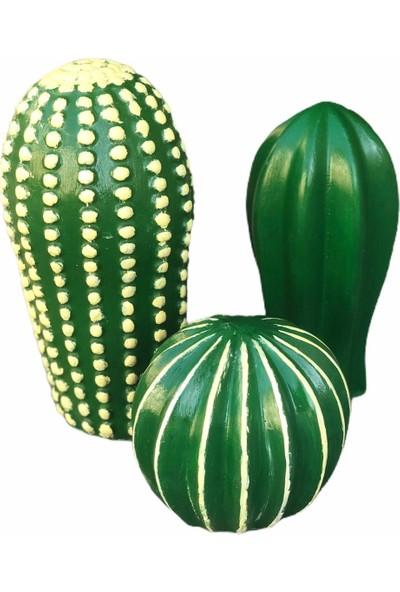 Bi Ucuza Dekoratif 3'lü Yeşil Kaktüs