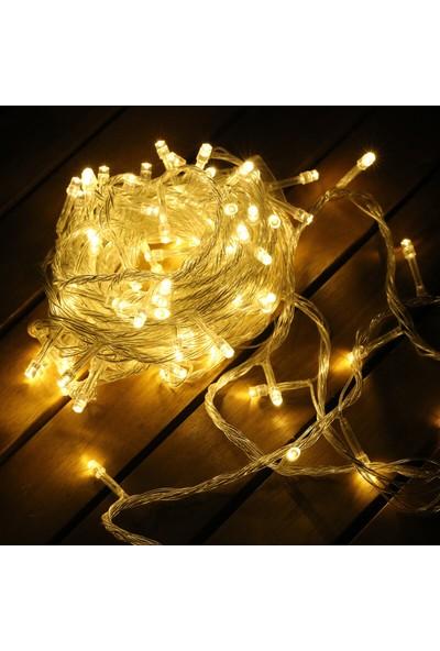 Real Ral LED Fişli 220 Volt 100 Ledli 10 m LED Gün Işığı LED