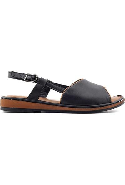 Venüs 20981206 Deri Kadın Sandalet-Taba Siyah