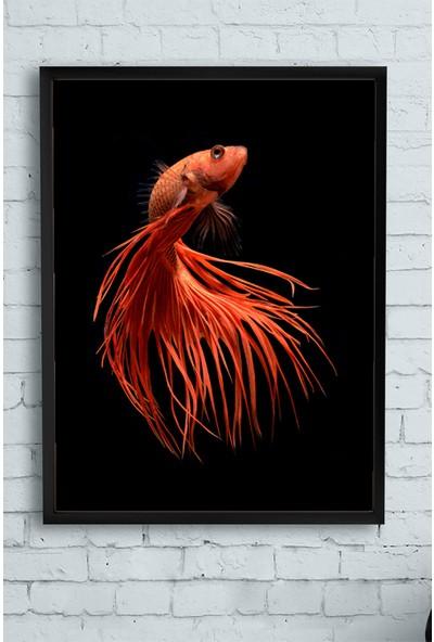 Postermanya Sanatsal Balık Hayvan Çerçeveli Tablo 3 21 x 30 cm