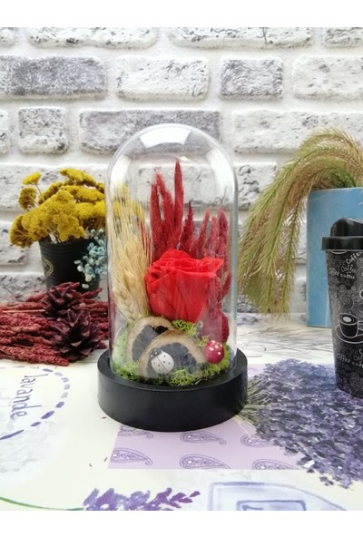 Teraryum Store Solmayan / Şoklu Kuru Çiçekli Kırmızı Gül Teraryum 10X18
