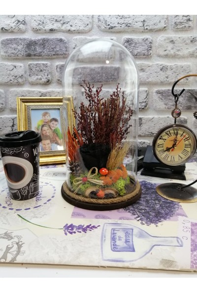 Teraryum Store Solmayan / Şoklu Kuru Çiçekli Siyah Gül Teraryum 15X30