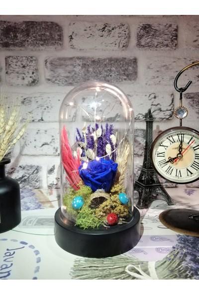 Teraryum Store Solmayan / Şoklu Işıklı Kuru Çiçekli Mavi Gül Teraryum 10X18