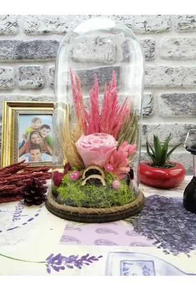 Teraryum Store Solmayan / Şoklu Kuru Çiçekli Pembe Gül Teraryum 15X30