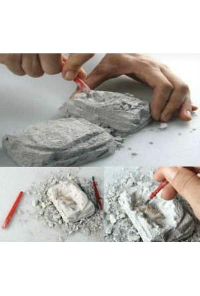 Azoy Arkeolojik Bilim Kazı Seti - Dinazor Türleri Serisi