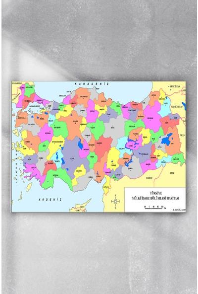 Postermanya Türkiye Haritası Eğitim Posteri 80 x 115 cm