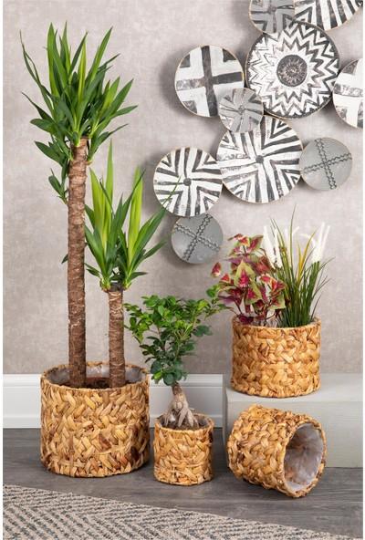 Doreline Naturel Hasır Saksı Sepeti 4 Boy Bitki Çiçek Lük Organizer, Dekoratif Sepet, Ev Dekoru