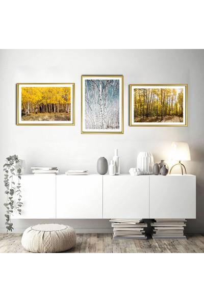 """Zeys Art Home Sonbahar Esintisi Kurumuş Yaprak Desenli """"çerçeveli Tablo Seti"""""""
