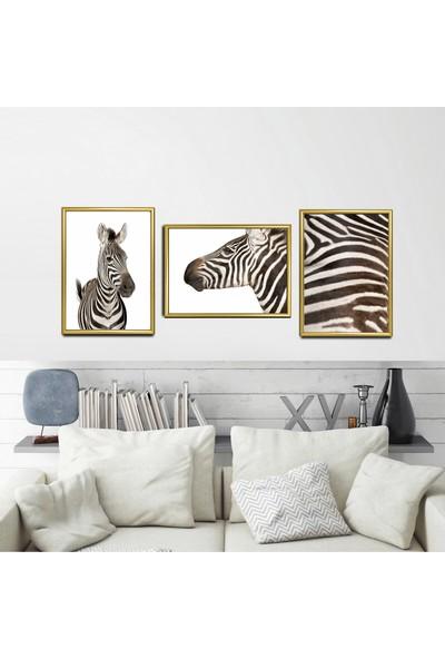 """Zeys Art Home Yaşam Alanlarınıza Özel Zebra Figürlü """"çerçeveli Tablo Seti"""""""