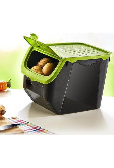 Pd Home Soğan & Patates Saklama Kabı 3'lü