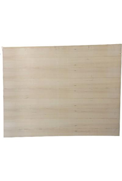 Şişmanoğulları Kontraplak-Beton Kontrası-Su Kontrası 170x0,8x220cm