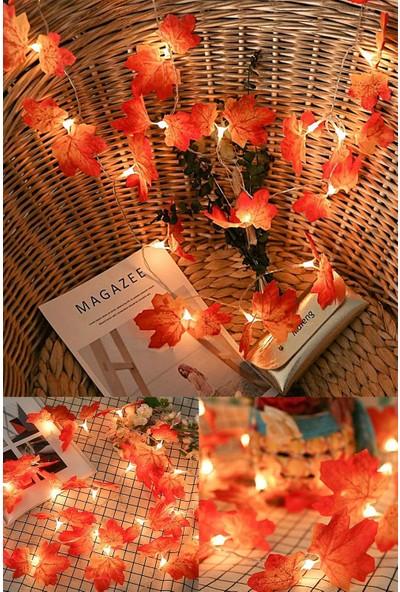 Deconorm Sonbahar Konseptli Dekoratif Yaprak Şerit LED Işık