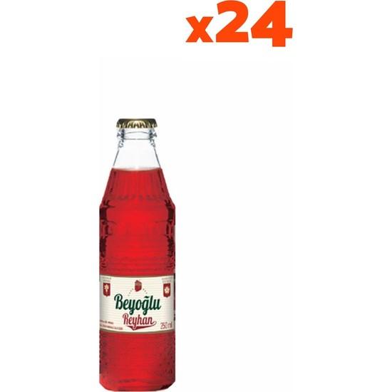 Beyoğlu Gazozu Reyhan 250 ml x 24'lü