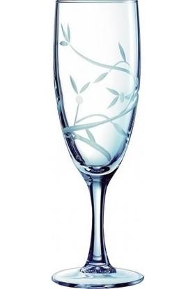 Ancel Cristal D'arques Allegria 3'lü Şampanya Kadehi 17 cl