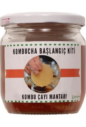Etik Farma Kombucha Mantarı Başlangıç Kiti-Kombu Mantar 40 ml
