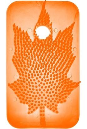 Rulopak Kapı Arkası Kokusu Sihirli Koku Yaprağı Mango 10'lu