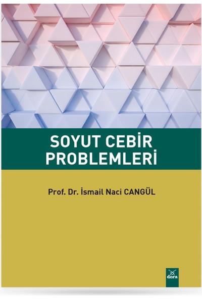 Soyut Cebir Problemleri - Ismail Naci Cangül