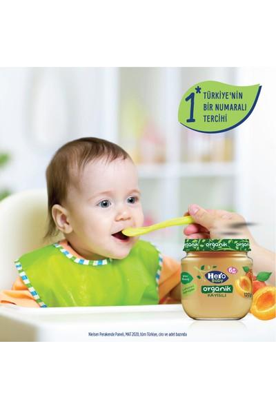 Hero Baby Organik Kayısı Püresi Kavanoz Mama 120g